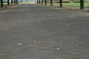 straat zeskanttegels